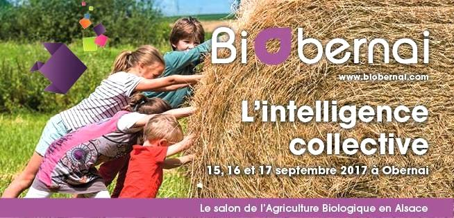 2017 08 31 salon de l agriculture biobernai a obernai